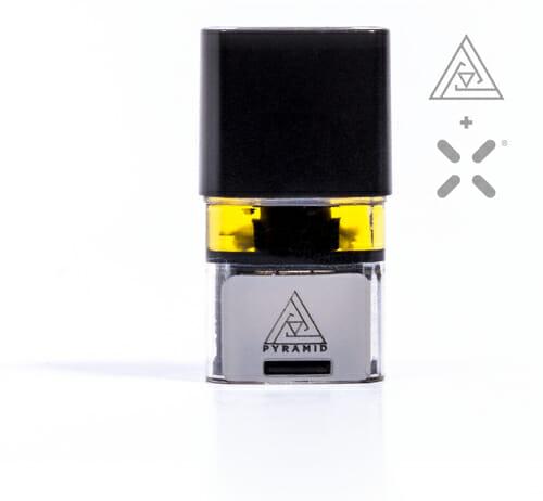 Pyramid Pax